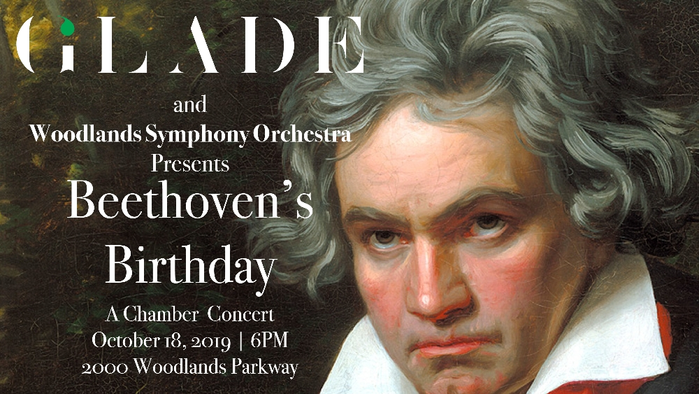 Beethoven's Birthday - A chamber music concert